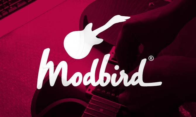 modbird-webseite-launch